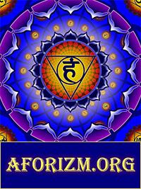 Известные афоризмы, приколы, статусы, цитаты, анекдоты, пословицы на AFORIZM.org