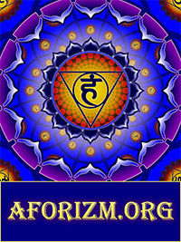 Мудрые афоризмы, приколы, статусы, цитаты, анекдоты, пословицы на AFORIZM.org
