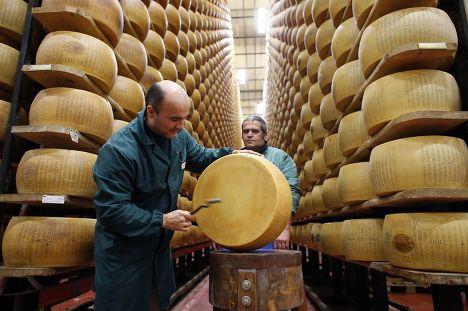 Photo of Как открыть свое производство сыра