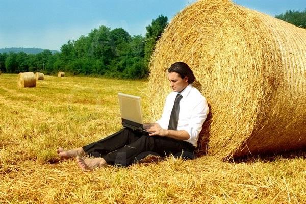 Photo of Бизнес на дому: Идеи для мужчин на селе