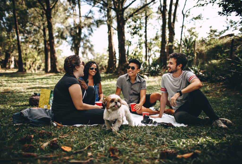 Что нужно взять с собой на пикник - советы