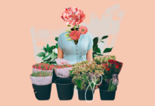 Photo of Выращивание цветов на продажу в домашних условиях