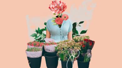 Photo of Как открыть цветочный магазин в своем городе