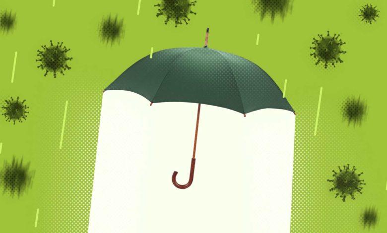 Как заработать с помощью вертикального озеленения стен